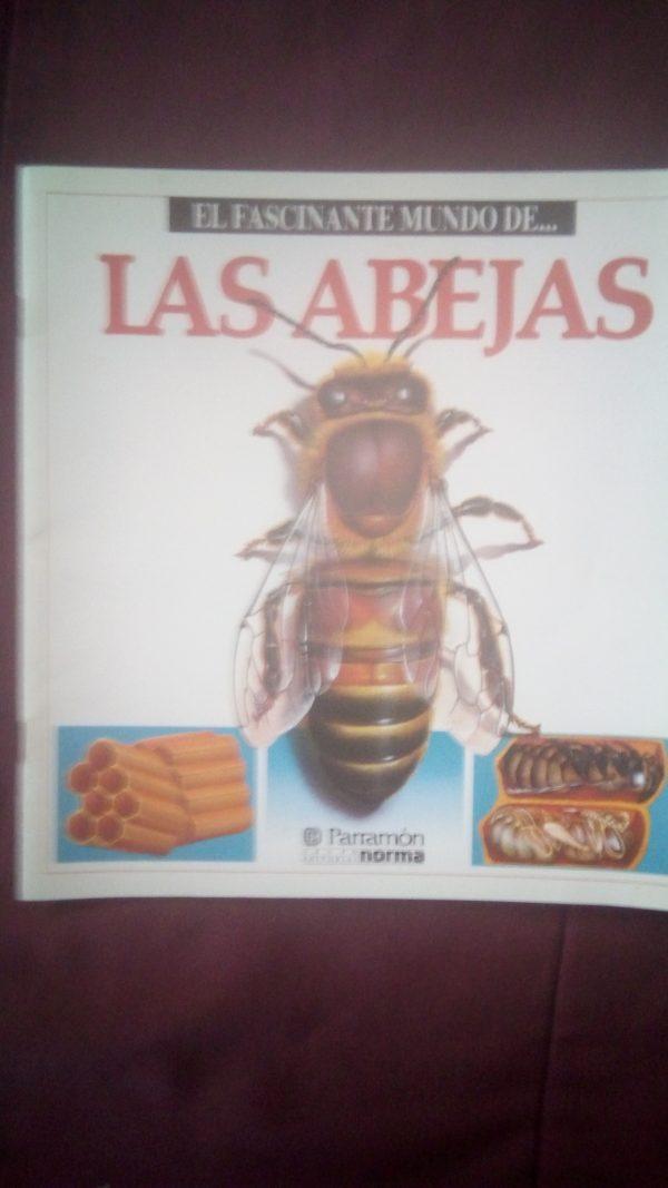 El fascinante mundo de las abejas