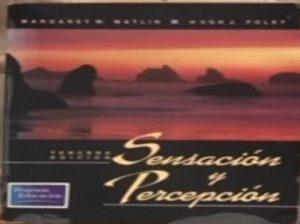 Sensacion-y-percepcion-2