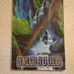 Un milagro en la cascada